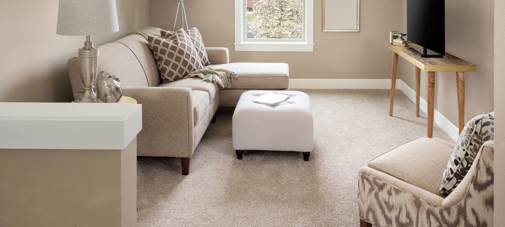Carpet Cleaners in London. How to choose the best.